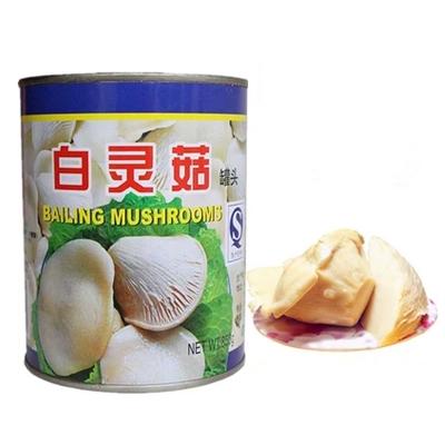 Custom Canned Bailing Mushroom,Condiment Sauces400 x 400 jpeg 75kB