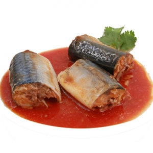 Canned sardine recipes