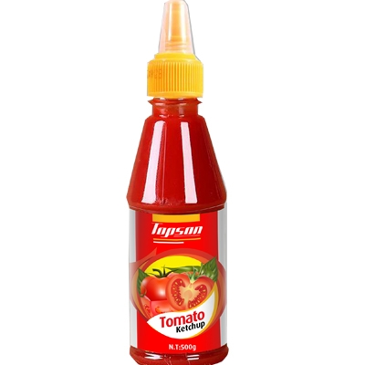 OEM Factory Supplier Tomato Ketchup 500g - HangFat